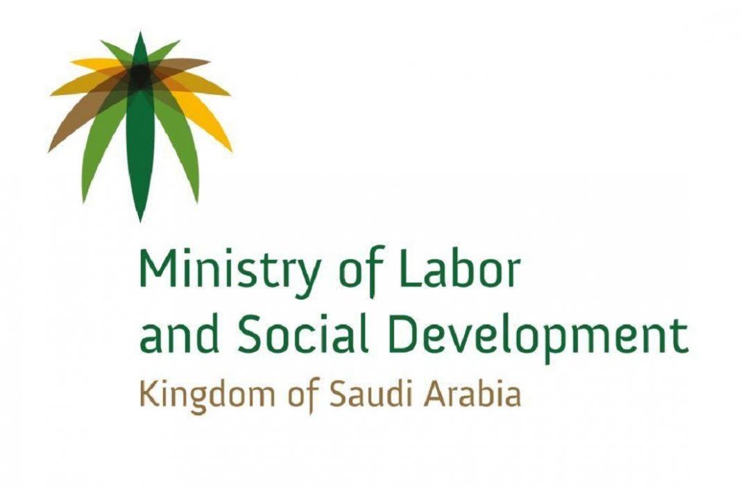 Validity and Fees of Skill Verification Program for Saudi Expats